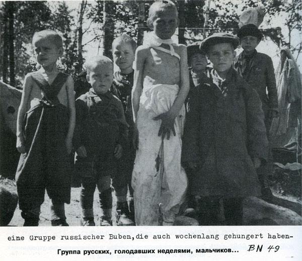 Battle in Volkhovsky Forest (World War II) 15