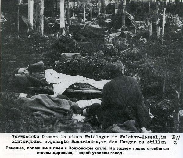 Battle in Volkhovsky Forest (World War II) 18