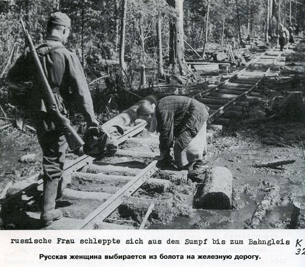 Battle in Volkhovsky Forest (World War II) 22