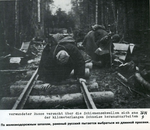 Battle in Volkhovsky Forest (World War II) 23