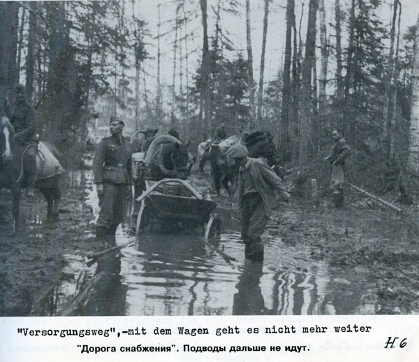 Battle in Volkhovsky Forest (World War II) 3