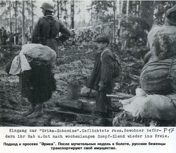 Battle in Volkhovsky Forest (World War II) 5