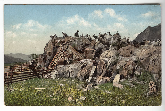 Color Post Cards of Russia 100 Years Ago 2