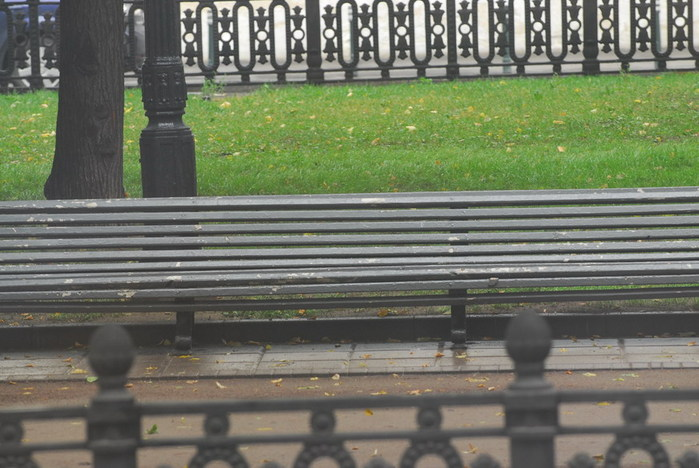 a one day of a bench in Moscow park 1