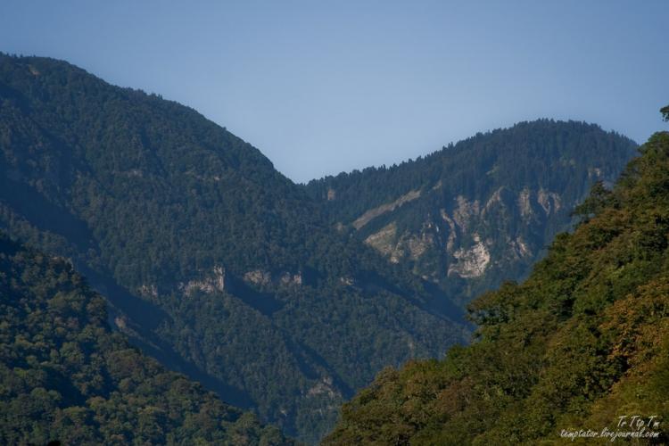 Gagri, Abkhazia 8
