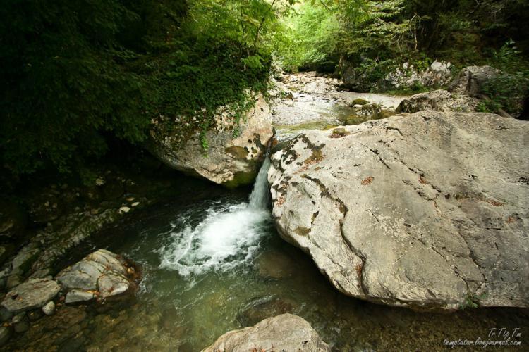 Gagri, Abkhazia 11