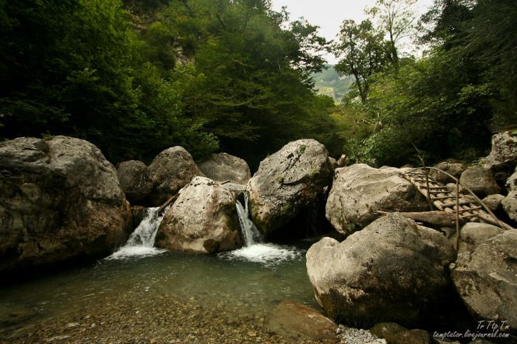 Gagri, Abkhazia 12
