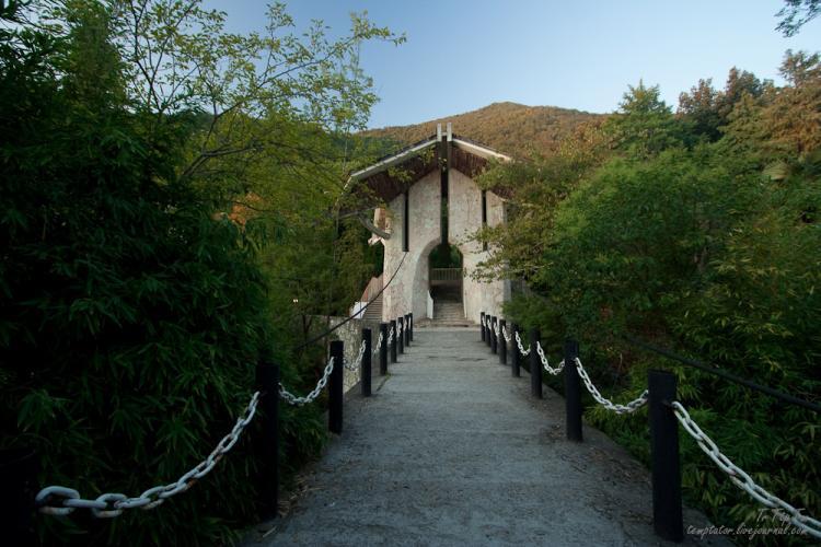 Gagri, Abkhazia 20