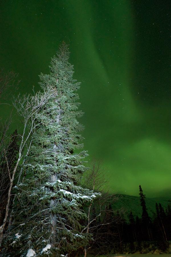Aurora borealis in Russia 15