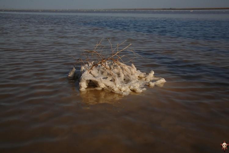 The Saltiest Lake