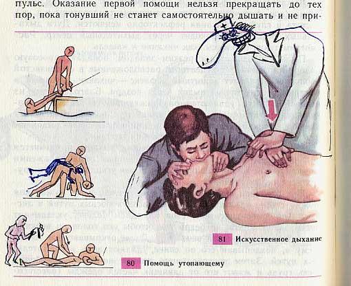russian biology textbook 11