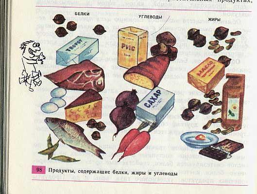 russian biology textbook 12