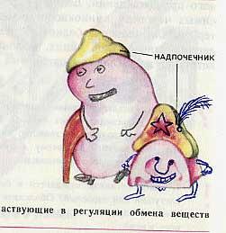russian biology textbook 13
