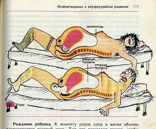 russian biology textbook 18