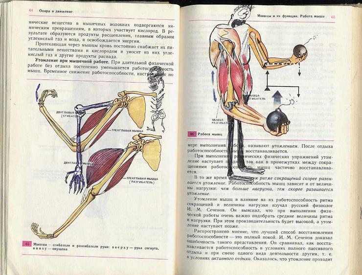 russian biology textbook 6