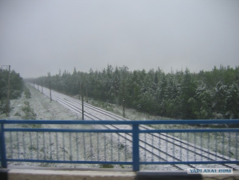 Snow in summer 2