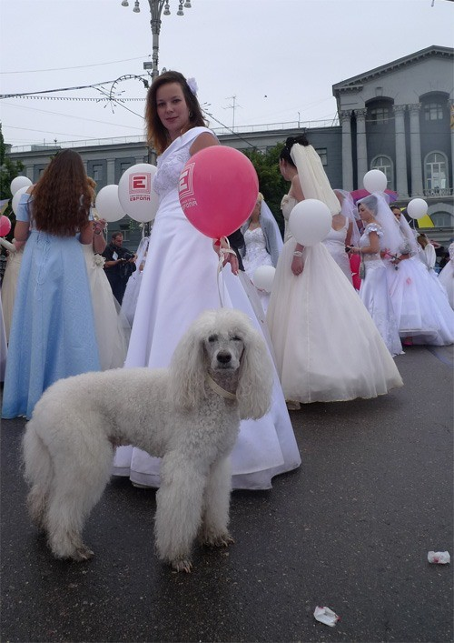 Russian brides on parade 7