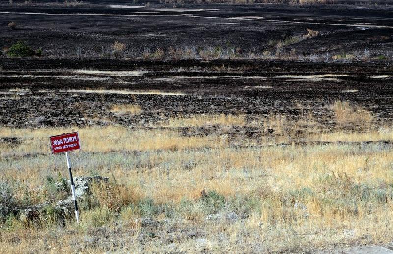 Burning Grass Demolished a Village