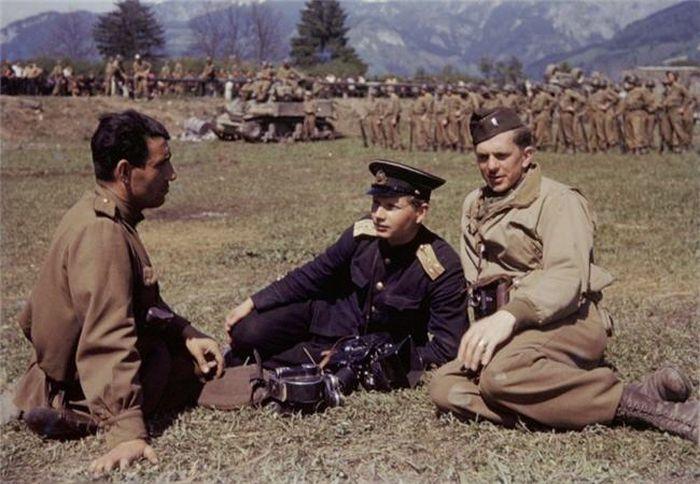 Colors of World War II 36