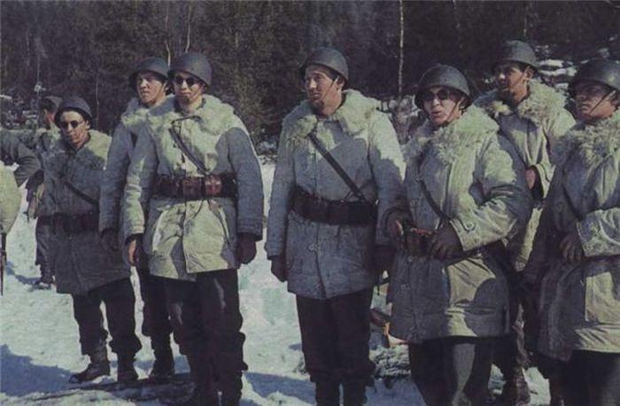 Colors of World War II 38