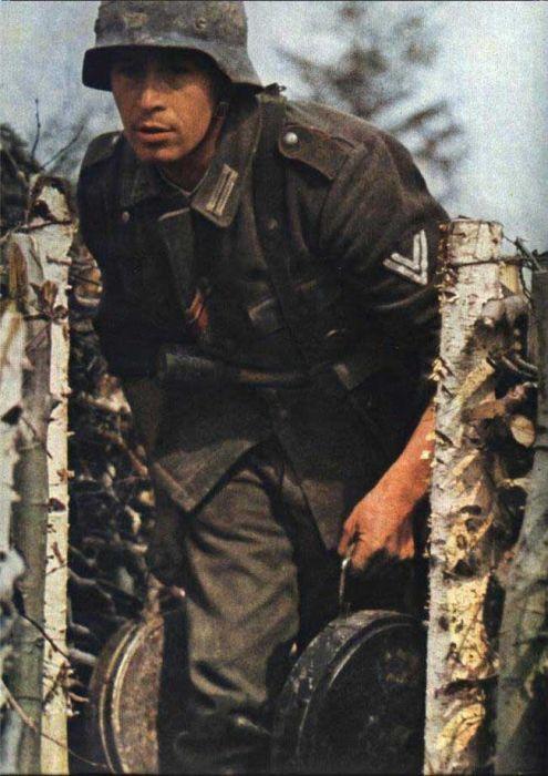 Colors of World War II 43