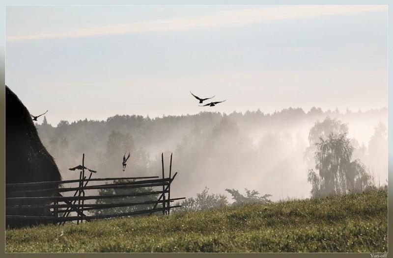 Russian countryside 20