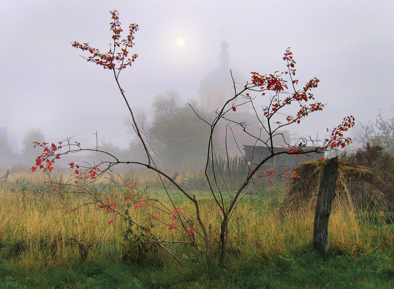 Russian countryside 25