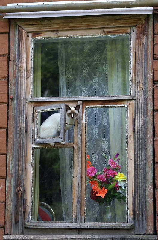 Russian countryside 32