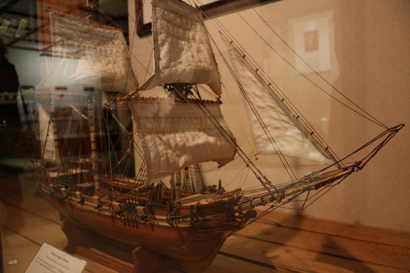 Darvinovsky Museum 18