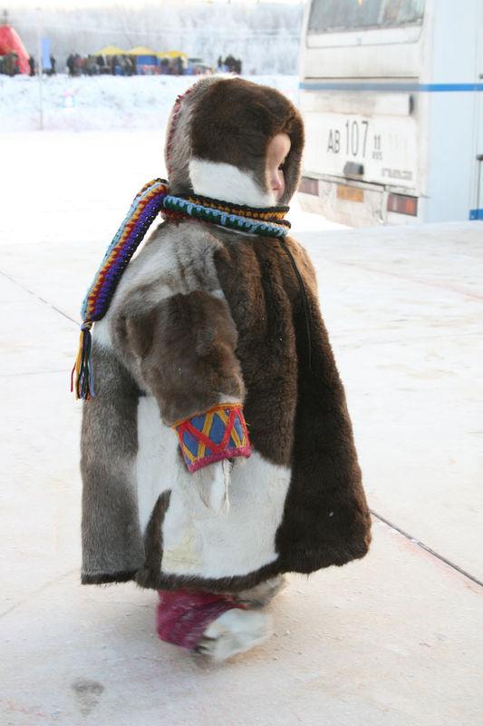 Russian deer racing 22