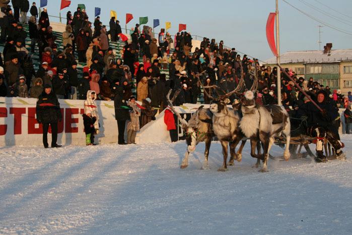 Russian deer racing 25