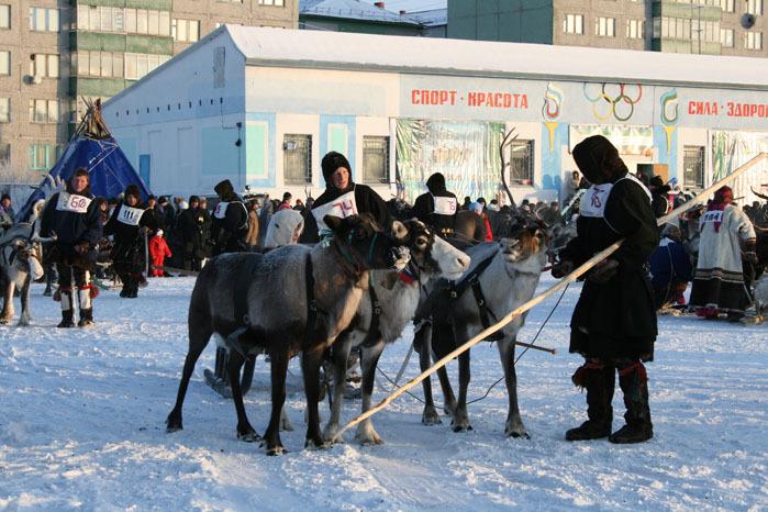 Russian deer racing 31