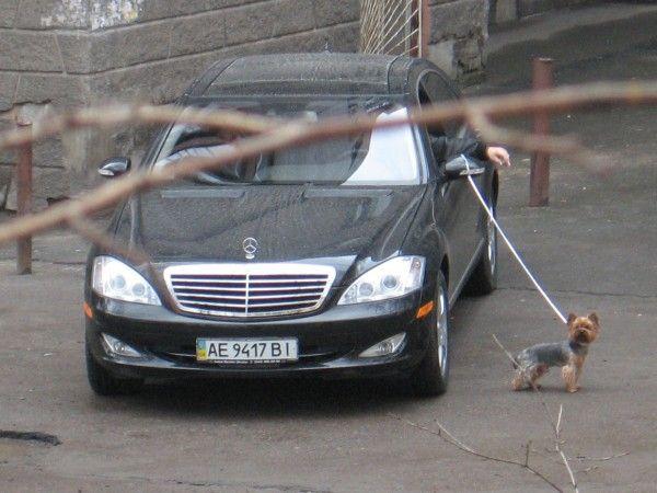 Russian dog 2