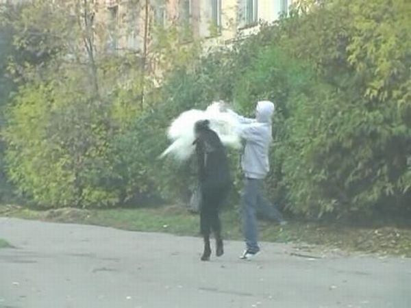 Russian guy revenge his ex 4