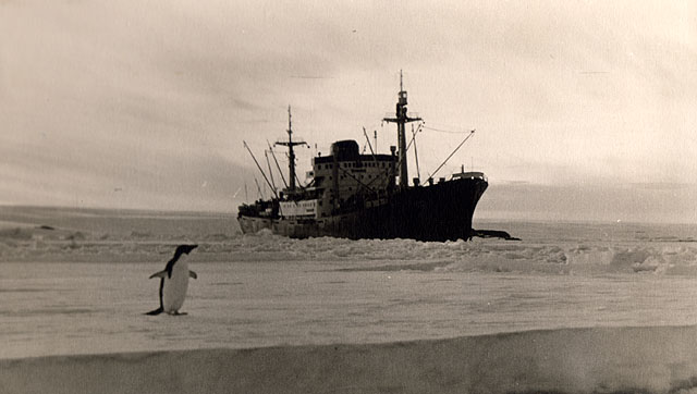 first Russian expedition to Antarctics in 1950 15