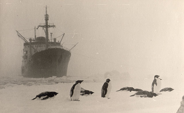 first Russian expedition to Antarctics in 1950 18