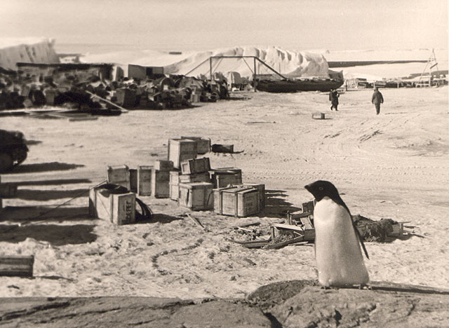 first Russian expedition to Antarctics in 1950 27