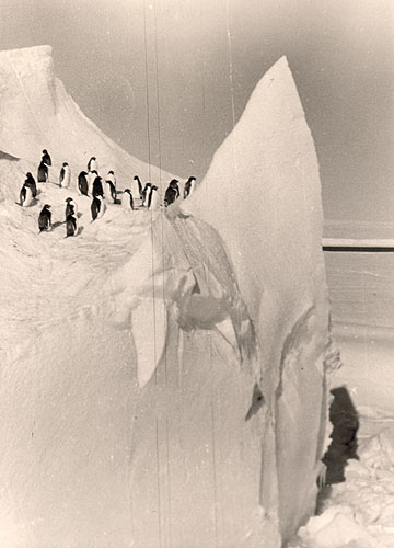 first Russian expedition to Antarctics in 1950 34