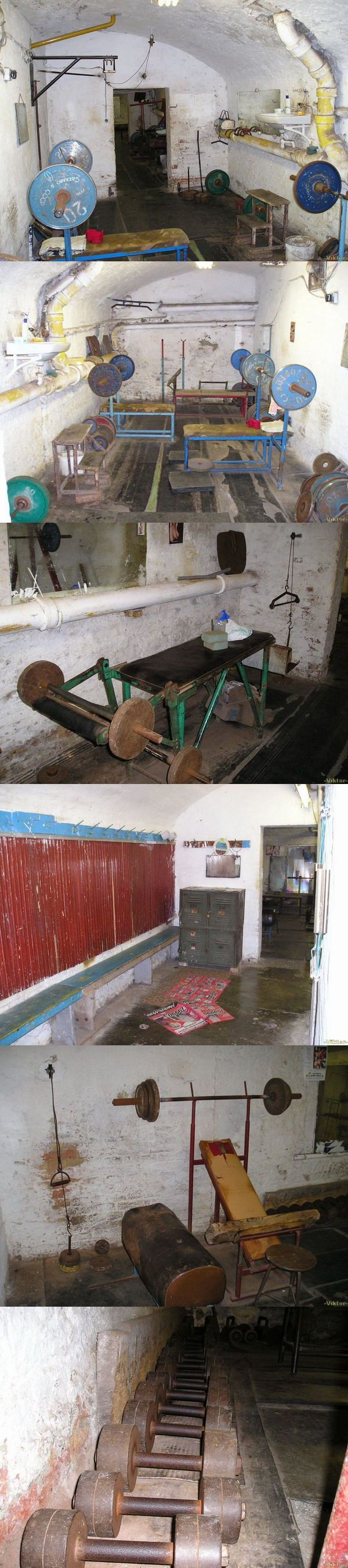 russian fitness studio