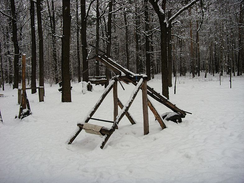 Russian gym in forest 6
