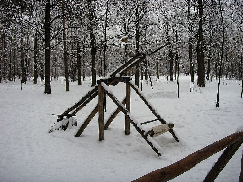 Russian gym in forest 7