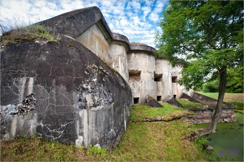 Fort V 4