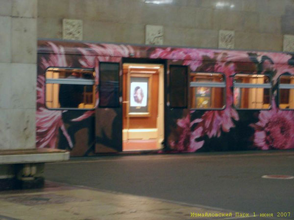a picture gallery right inside russian metro train 9