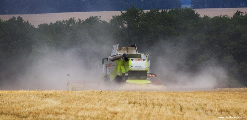 Russian harvest 2