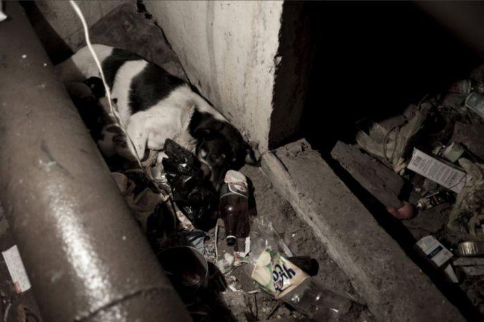 Homeless Odessa 25