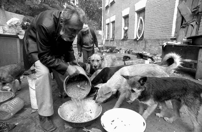 homeless lady from Kiev with a lot of dogs 11