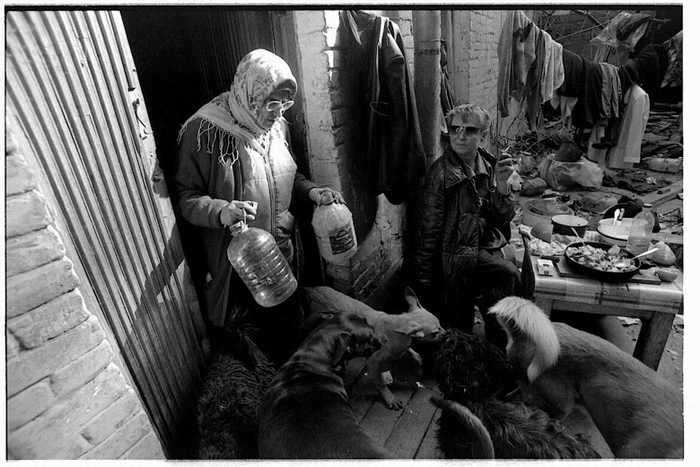 homeless lady from Kiev with a lot of dogs 12