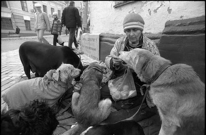 homeless lady from Kiev with a lot of dogs 20