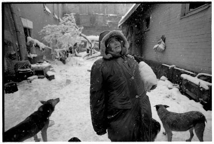 homeless lady from Kiev with a lot of dogs 6