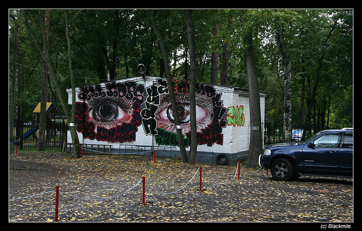 Painted houses in Moscow by graffiti kids 11